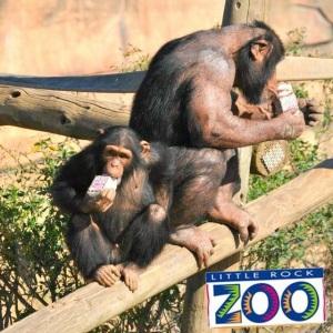 Zoo Hiland Dairy 2015